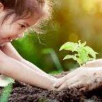 Meningkatkan Kecerdasan Naturalis Anak